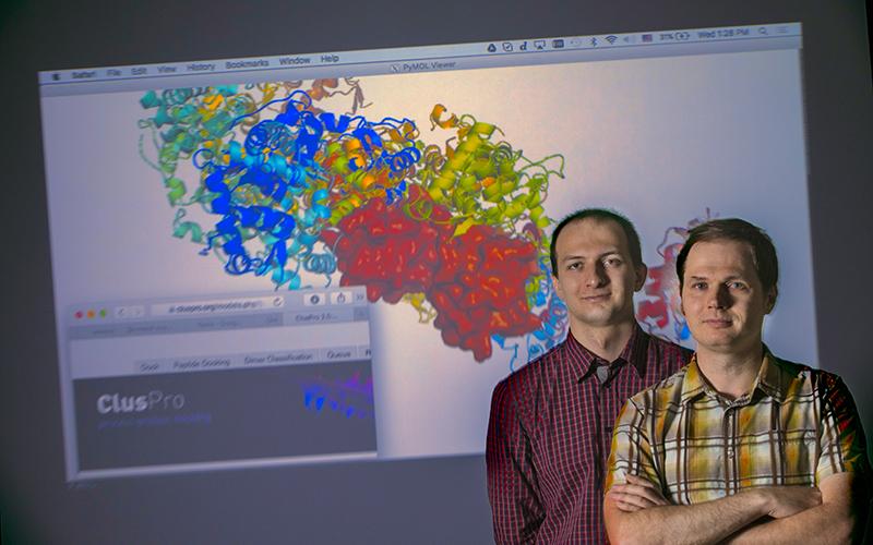 Dzmitry Padhorny and Dima Kozakov