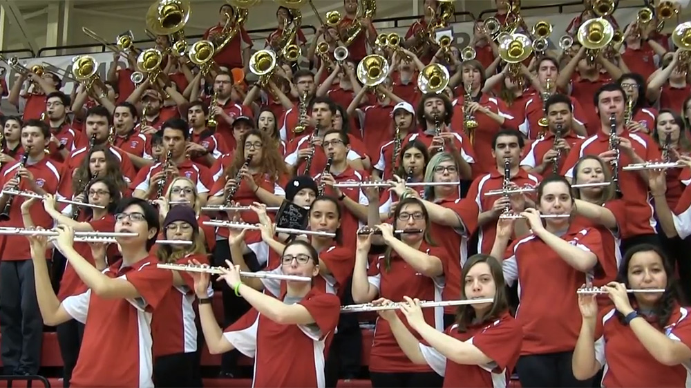 ATHLETIC BAND, The Spirit of Stony Brook Marching Band is more than 200 strong.