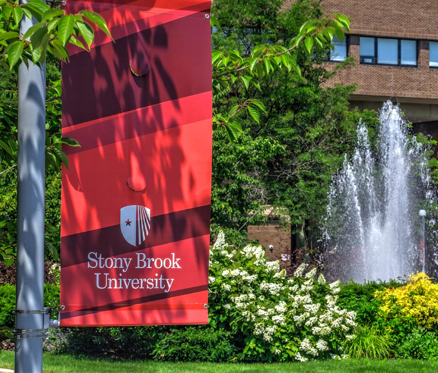Centers & InstitutesSpanning arts and sciences, educational and clinical, Stony Brook has more than 100 specialized centers and institutes that provide services and resources to thousands locally and globally.