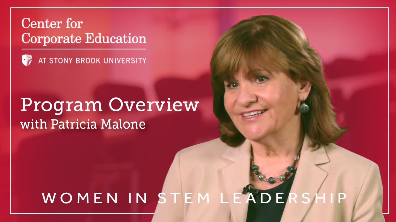 The Women in STEM Leadership Program Overview