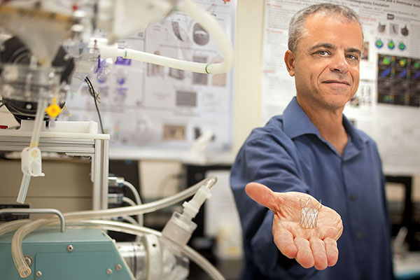 Danny Bluestein, Professor of Biomedical Engineering, Named BMES Fellow
