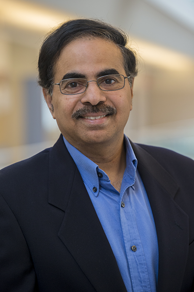 R. Sekar named SUNY Empire Innovation Professor in Cybersecurity