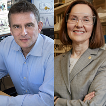 Materials Science and Chemical Engineering Faculty Receive U.S. Department of Energy EFRC Awards