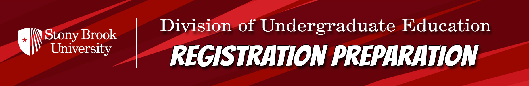 The Registration Preparation Page