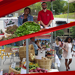From Farm to School: Stony Brook University Hosts Farmers Market