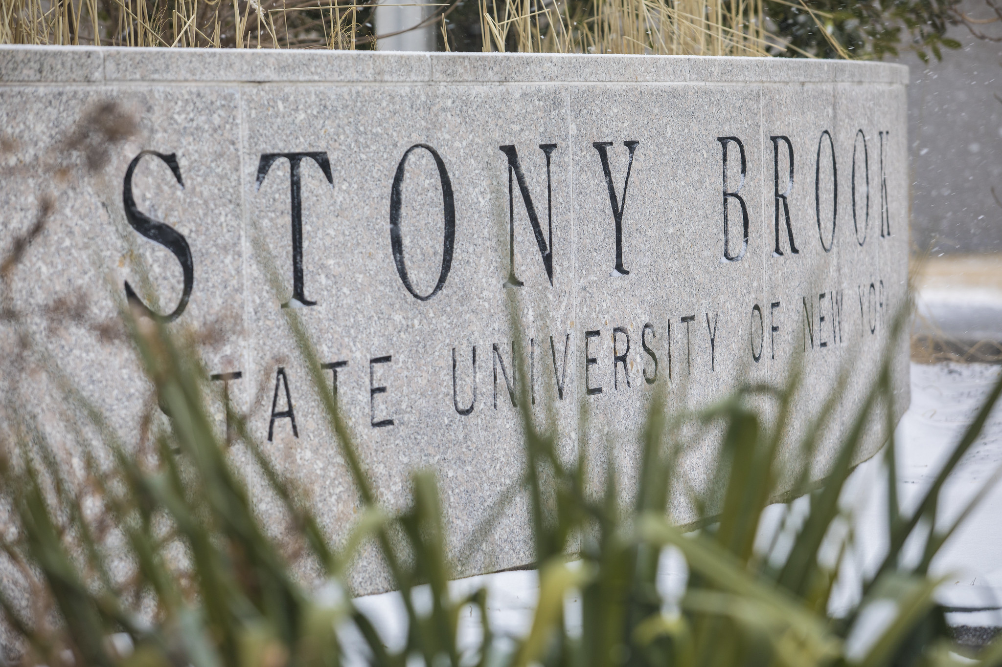 Stony Brook University Sign