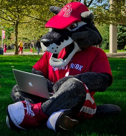 Wolfie on a laptop