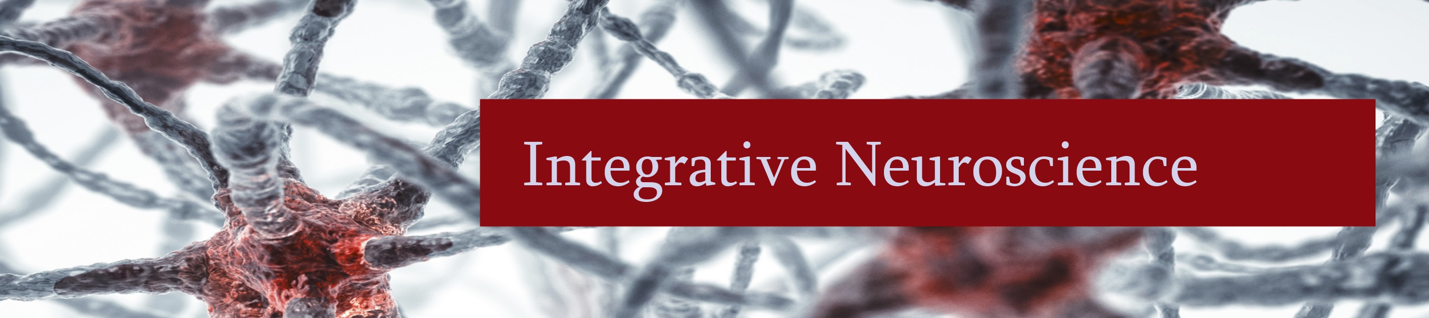 integrative neuroscience banner picture