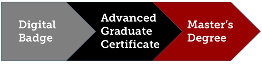 "Arrows containing ""Digital Badges, Advanced Graduate Certificate, Master's degree"""