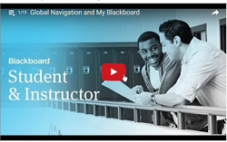 Screenshot of Blackboard video