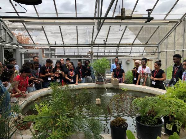 CSTEP Greenhouse Students Summer 19