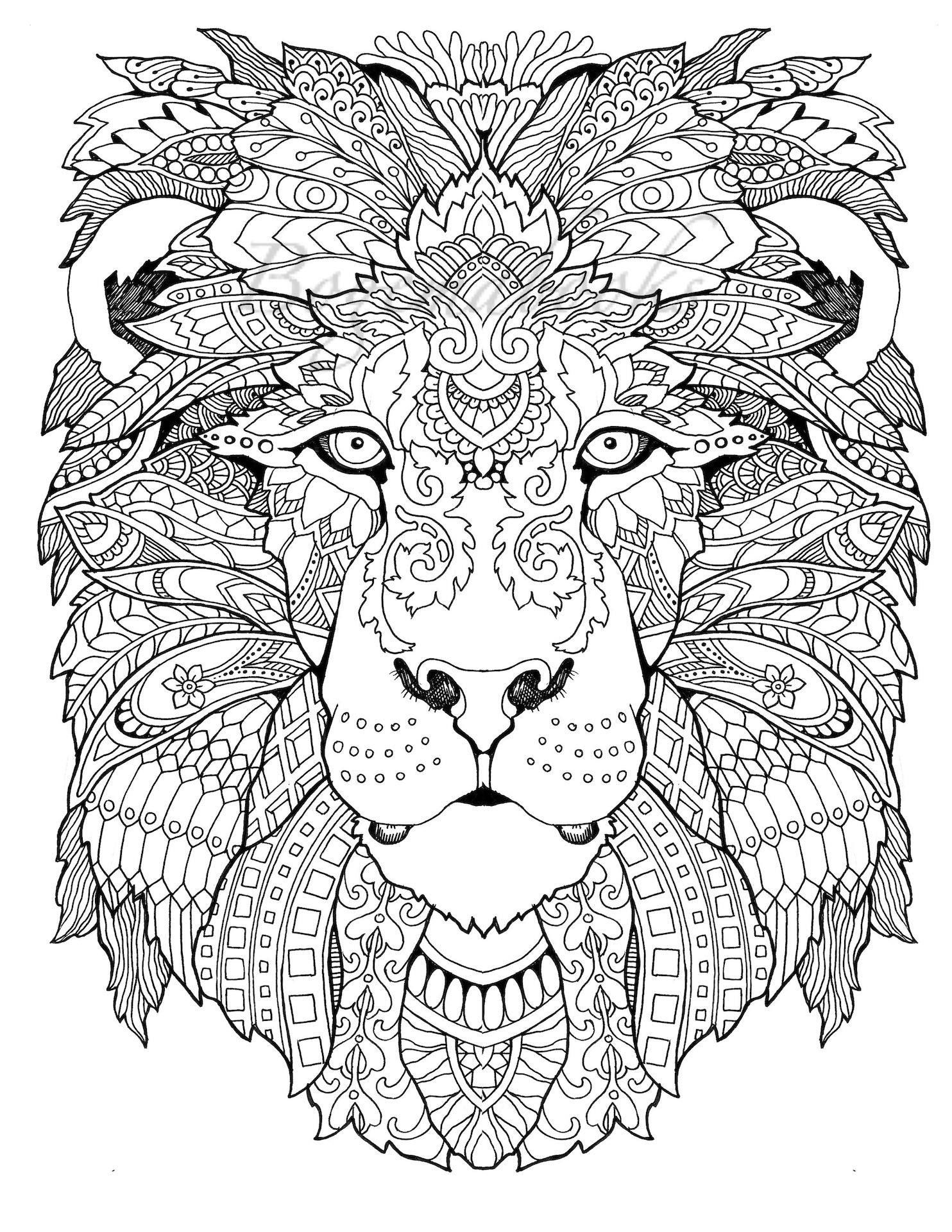 Coloring Sheet Lion