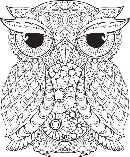 Coloring Sheet Owl