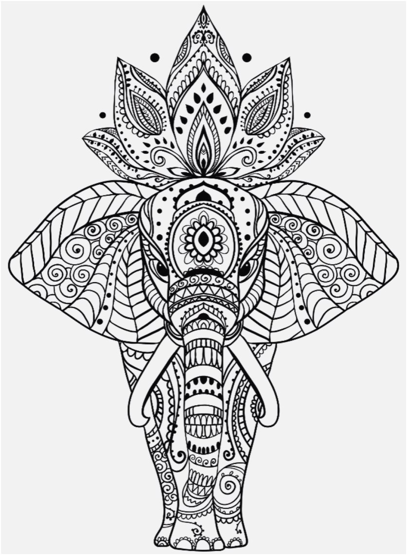 Coloring Sheet - Elephant