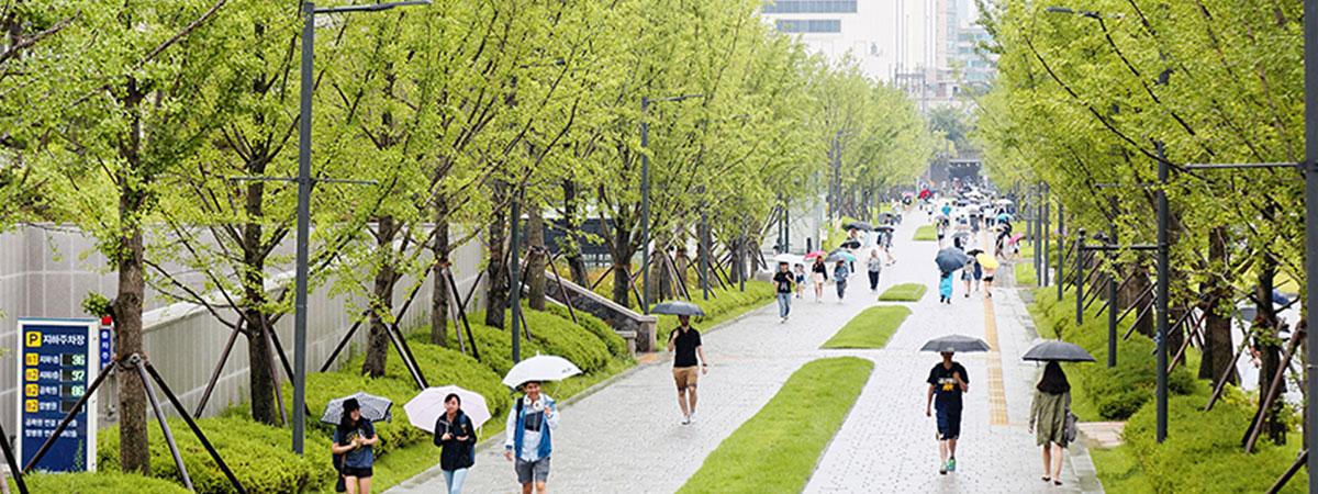 Yonsei Campus Map.Yonsei University Summer Study Abroad