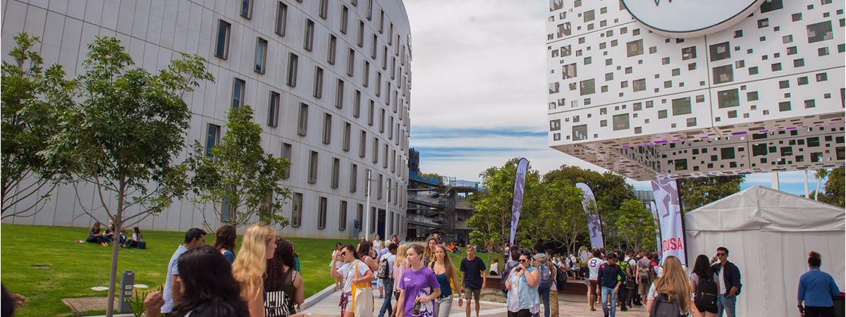 Kết quả hình ảnh cho summer semester in australia