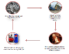 Scrap Metal Recycling Process