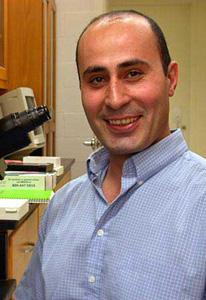 Bassem Allam