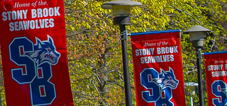 SBU Seawolves Banners on campus