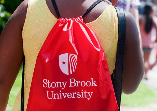 Stony brook university admissions address-4553