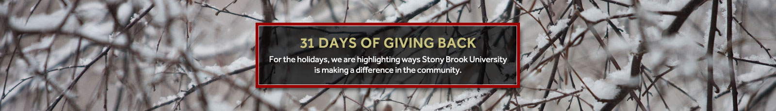 31-days-of-giving