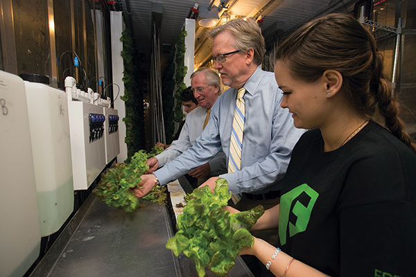First harvest of Freight Farm lettuce with Vice President for Student Affairs Peter Baigent (left) and Dean of Students Timothy Ecklund.