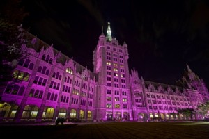 Albany goes purple