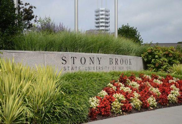 Stony brook us news-5245