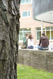 Students with tree